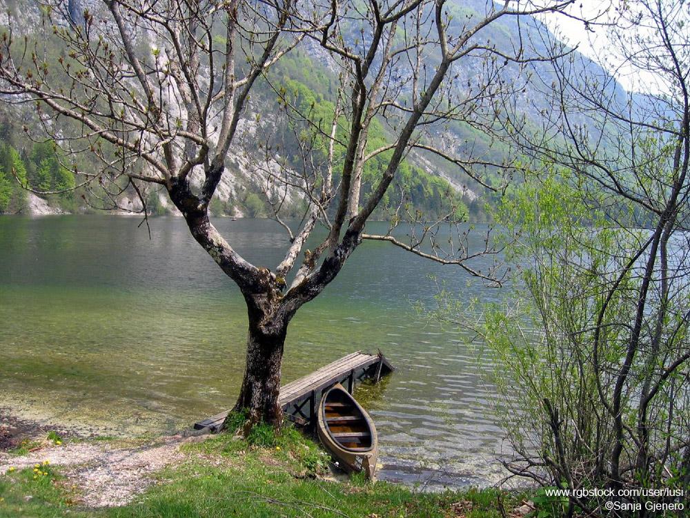 Peaceful Lake View